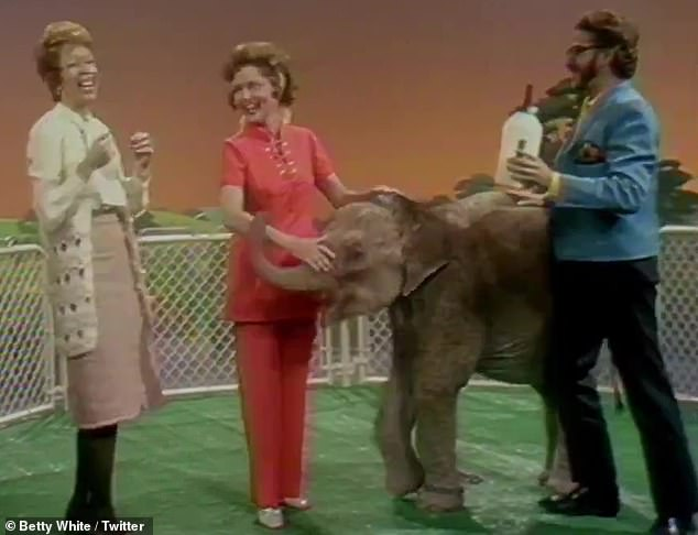 Feeding time: White feed a baby elephant with fellow comedian Carol Burnett, 87, in one clip