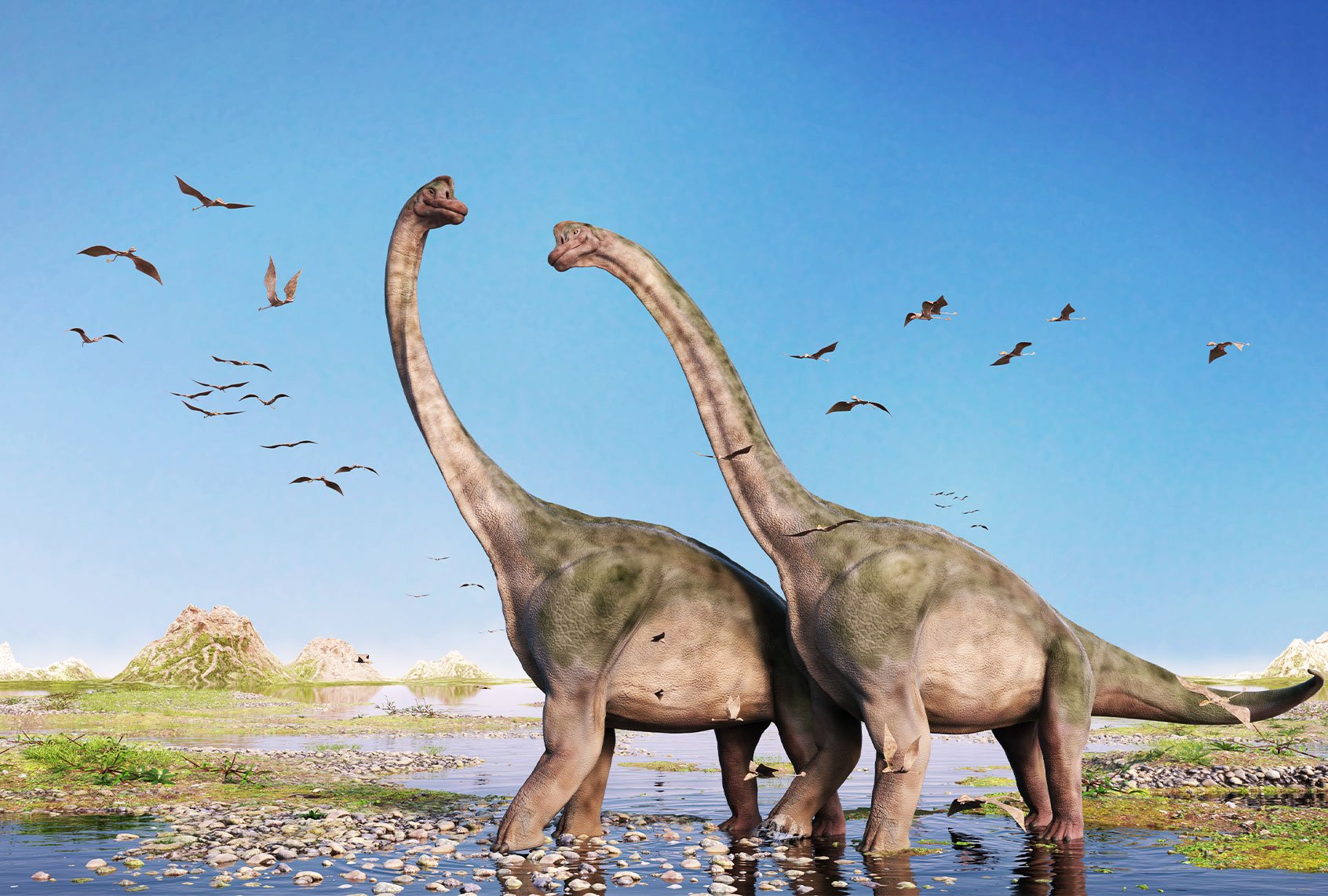 Paleontologists have probably found the largest dinosaur of all time